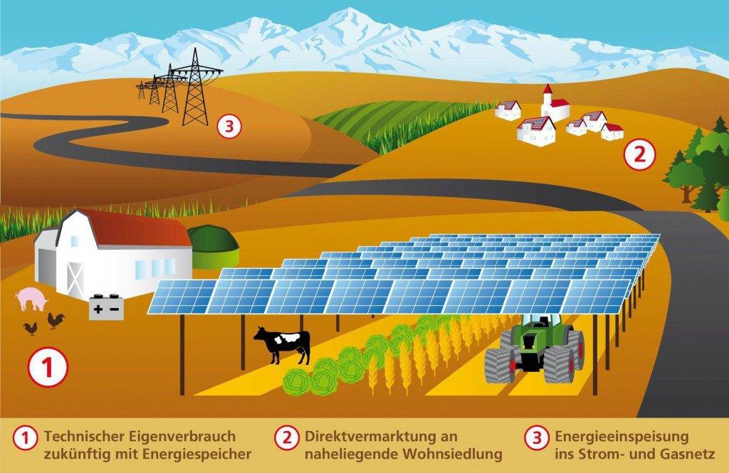 Grafik: Fraunhofer Institut, Agrophotovoltaikanlage