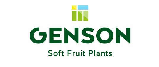 Logo Genson BV Soft Fruit Plants