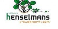 Logo Henselmans