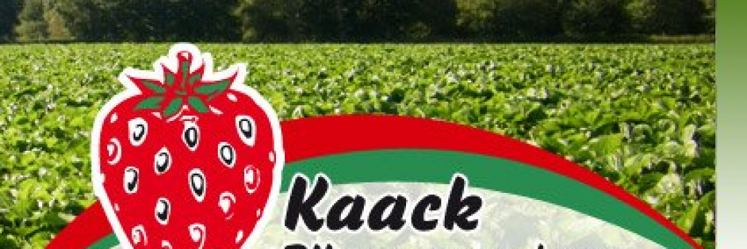 Logo kaack-pflanzenvermehrung-logo