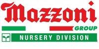 Logo Mazzoni Logo1