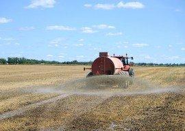 Emissionen aus Landwirtschaft gegenüber 1990 unverändert