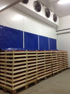 Shock Cabinets Fast Cooling With Air 2 1.jpg