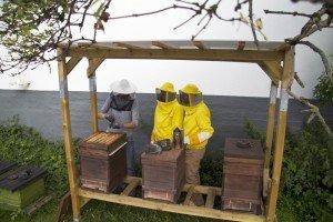 Bienenpaten am Stand in Hamburg. Foto: BEEsharing