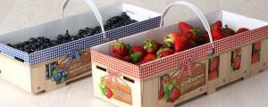 LuS Krempelkoerbe Kulturheidelbeeren Erdbeeren.jpg