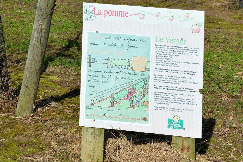 Infos zum Apfelanbau Foto: Heike Sommerkamp