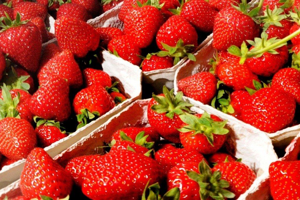 Erdbeeren, Ernte 2018