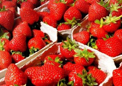 6 % mehr Erdbeeren als im Vorjahr trotz Flächenreduzierung – Spargel nahezu unverändert