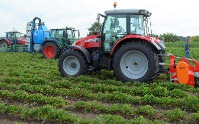 Praxisvorführung zur maschinellen Unkraut- und Ausläuferbekämpfung im Erdbeeranbau