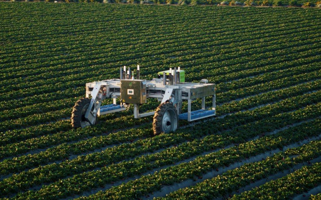 Saisonarbeit Teil 8: Automatisierte Ernte– Der Traum vom Erdbeer-Pflückroboter