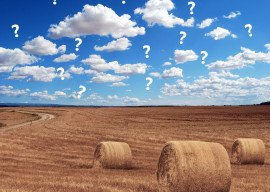 Online-Dialog zwischen Landwirten und Verbrauchern