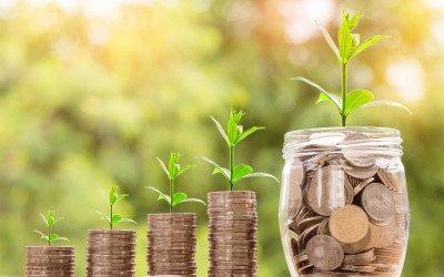 Landwirtschaftliche Rentenbank senkt Zinsen für Förderkredite