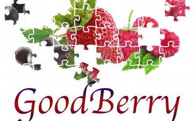"""EU-Projekt """"GoodBerry"""" will Beerenanbau an klimatische Bedingungen anpassen"""