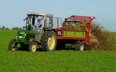 Biobasierte Dünger sollen künftig Mineraldünger ersetzen