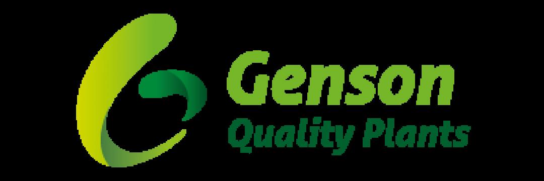 Logo Genson Qp Logo 400px Rgb