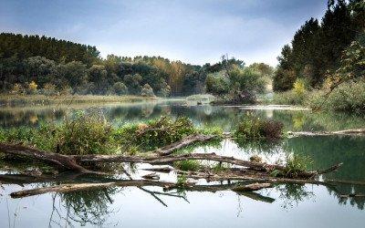 Zustand der Umwelt in Europa