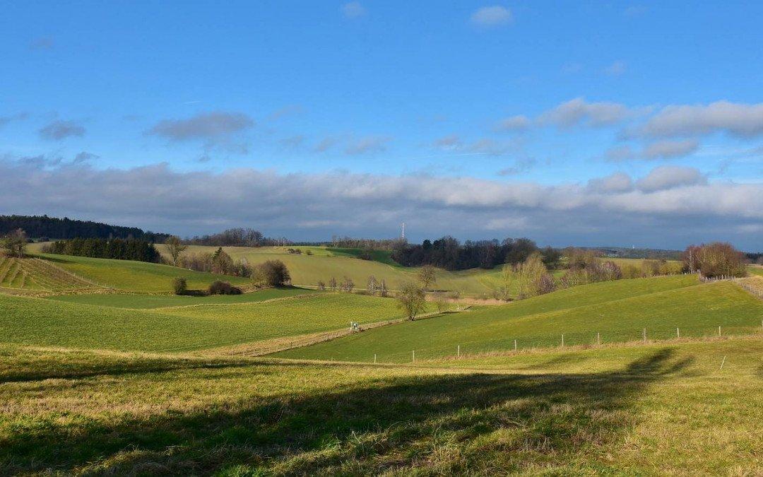 Kaufwerte für landwirtschaftliche Grundstücke steigen