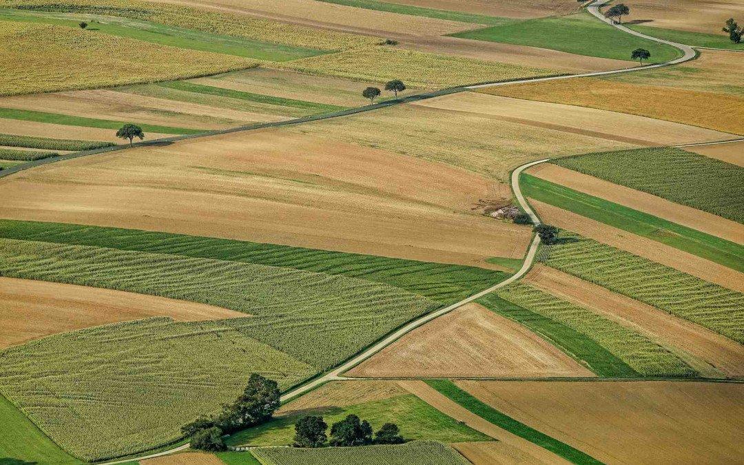 Preisbremse für Ackerland