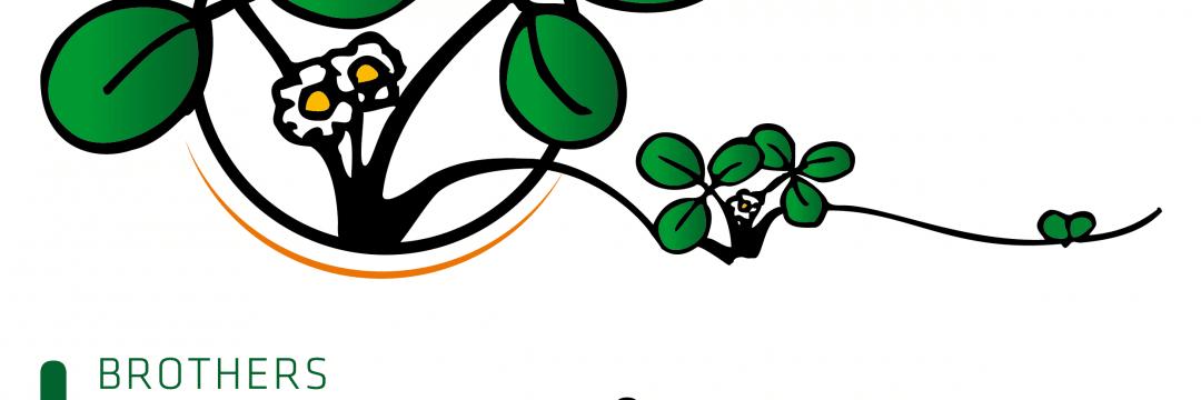 Logo Henselmans Logo EN Facebook0215 01