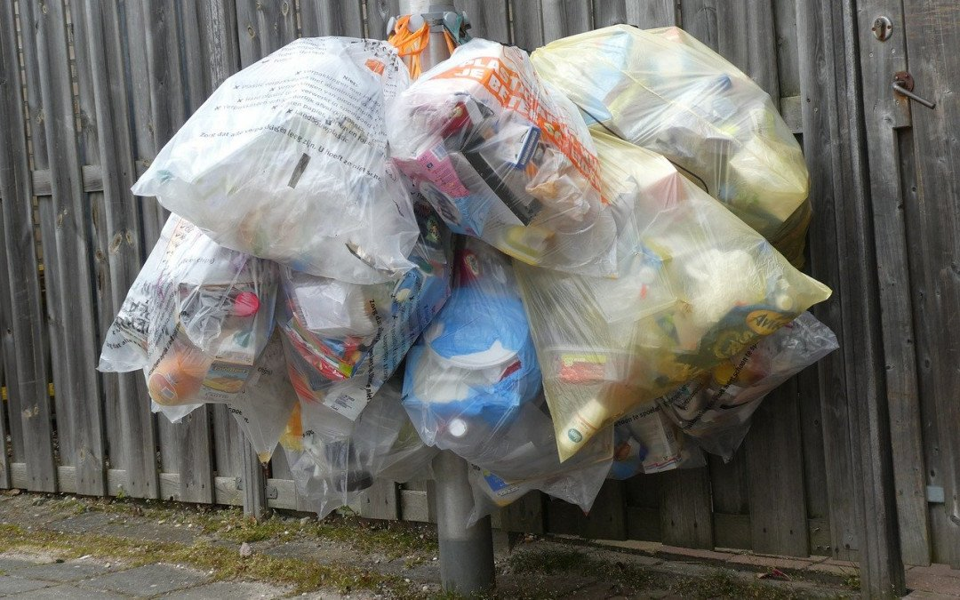 Nichts für die Tonne – umweltfreundliche Kunststoffprodukte aus Bioabfällen