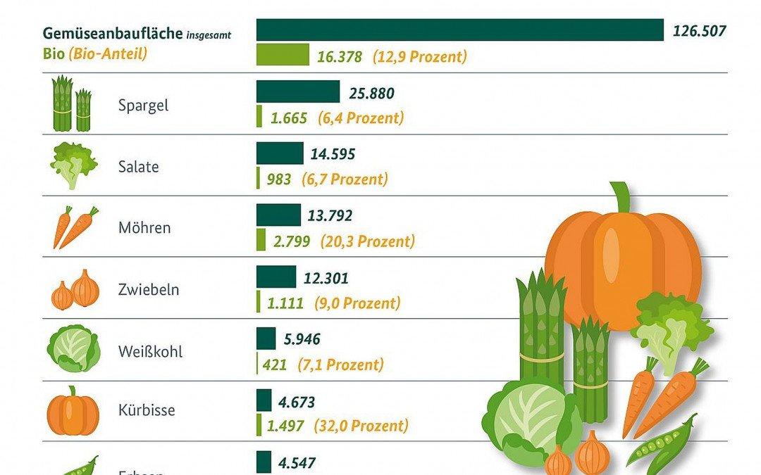 Gemüseanbau in Deutschland