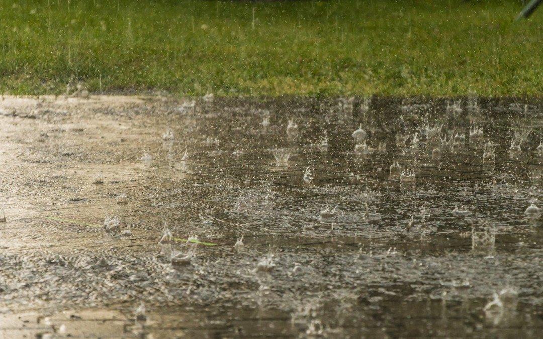 Starkregen und Hitze – neue Details zum Klimawandel