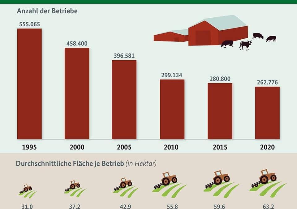 Wie haben sich Anzahl und Größe landwirtschaftlicher Betriebe entwickelt?